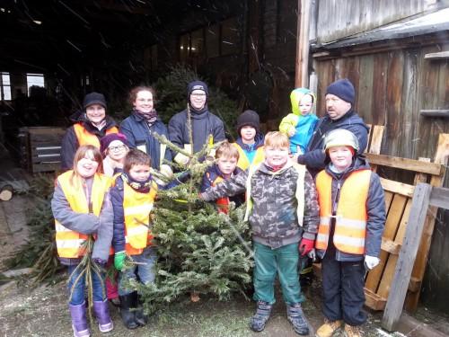 Weihnachtsbaumabfuhr 2017